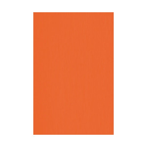 ONE Flex Soft (no-cut) NEON ORANGE A3