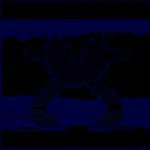Wacom Tablet-Halterung für Cintiq 21UX (DTK-2100)