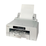 Sawgrass SG800 - Dye Sublimation Printer A3, mit Tintenset