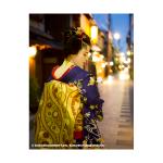 ILFORD Washi Torinoko for FineArt Album, 110 g/qm, 210x335mm