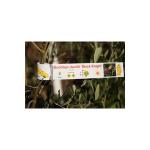 AppFactory Expert PET Film, weiss matt - Schlaufe, 160 g/qm,A4,10