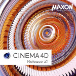 Maxon C4D Perpetual R21 - License for License Server  (2 - 4 seat