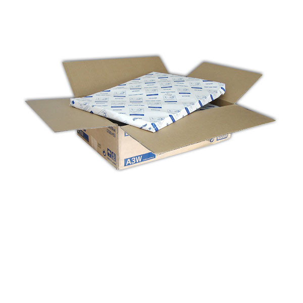 Epson Premium Luster Photo Paper, 260g/qm, DIN A3+, 100 Blatt