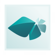 Autodesk Media and Entertainment Collection IC