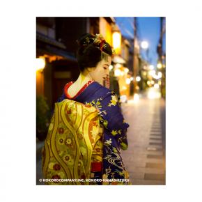 ILFORD Washi Torinoko for FineArt Album, 110 g/qm, 210x245mm