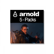 Autodesk Arnold 5.0 Commercial New Annual Multi-User 5er-Pack