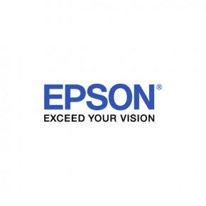Epson Tinte light black für SP 11880 700ml